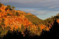 Beautiful colour at sunset in Warren Gorge.